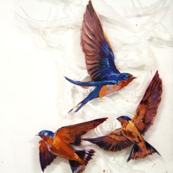 "Barn Swallows on Glass 24"" x 24"""