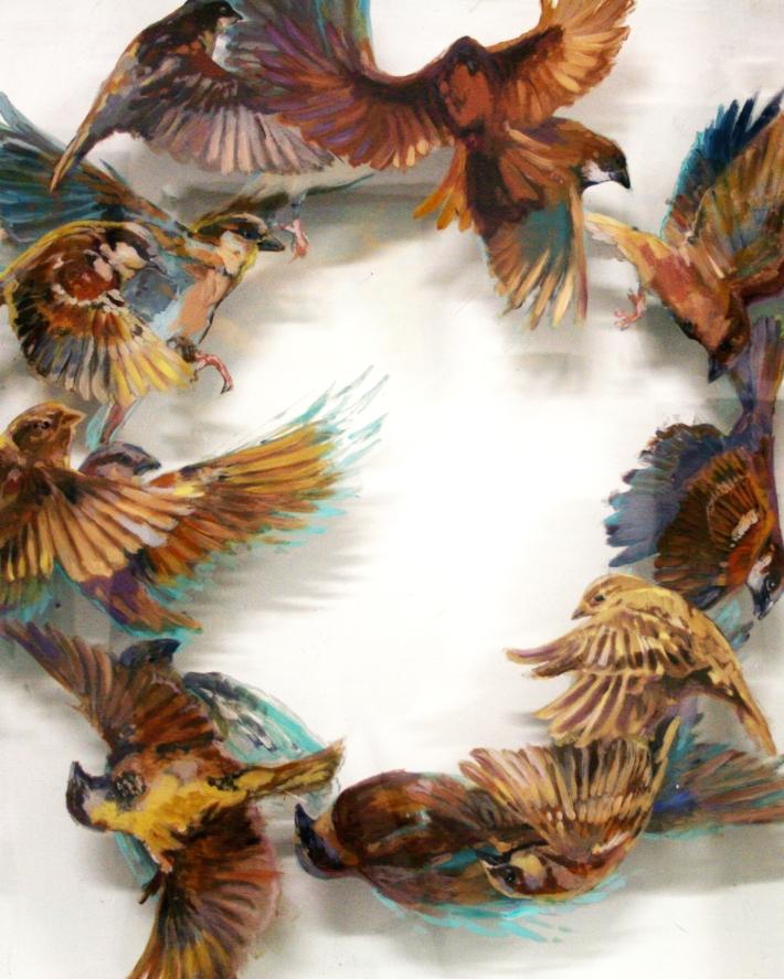 Flirting Fighting Flocking