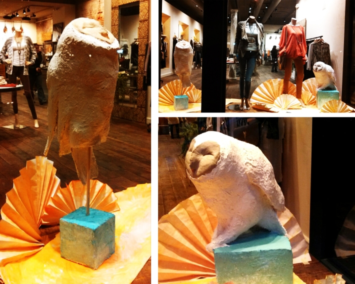 owl window display Jan. 2014