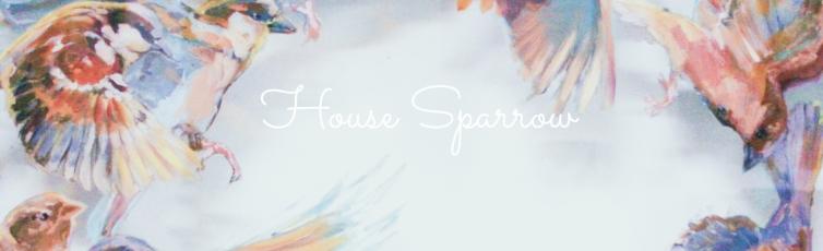 house sparrow banner
