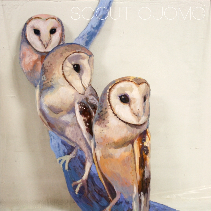 Barn Owl Trio 2015 Sentience Gallery